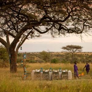 非洲-桑给巴尔岛
