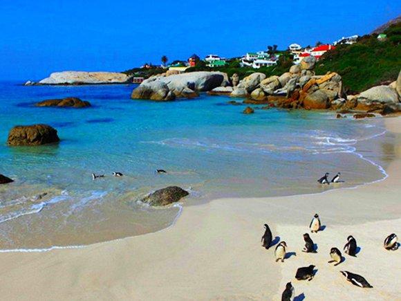 南非-蓝色列车