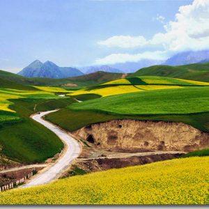 中国西部-亲子游